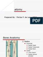 Elbow Anatomy1