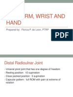 Forearm, Wrist and Hand
