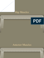 Hip Muscle Origins and Insertions
