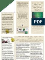Magna Carta QnA Primer