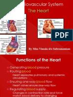 Circulatory System - Heart
