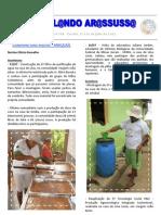 Circulando Arassussa - Ano 4 - nº 108