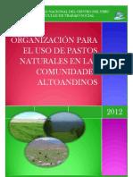 Trabajo Social - Organizacion Para El Uso de Pastos Naturales en Zonas Altoandinos - Capcha Huaynates July Veranisse Ix Semestre - Uncp