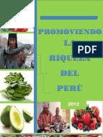 Boletin Sierra Exportadora Evaluacion 2012 Fats Uncp