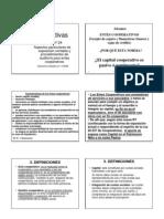 Capitulo 10 - Cooperativas ( Rt 24 )
