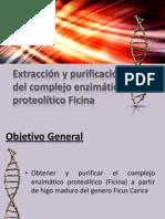 Bio Enzima Ficina