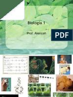 4805293-Biologia-PPT-Aula-01-Origem-da-Vida.ppt