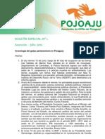 Boletín especial golpe  parlamentario en Paraguay