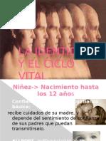 Identidad y El Ciclo Vital p. p.