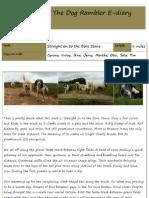 The Dog Rambler E-diary 17 July 2012