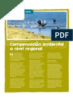 Compensación Ambiental a Nivel Regional