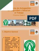 Programa de Autogestion de Seguridad y Salud en El Trabajo PASST