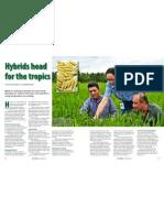RT Vol. 11, No. 3 Hybrids head for the tropics