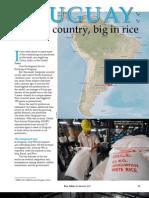 RT Vol. 11, No. 3 Uruguay