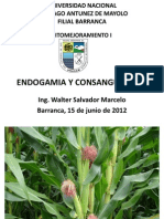 PPT ENDOGAMIA.ppt