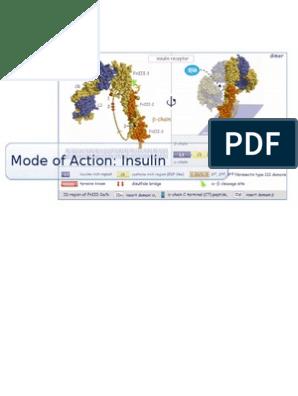 asociación de diabetes ptp1b
