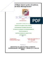 Certificat Nagar