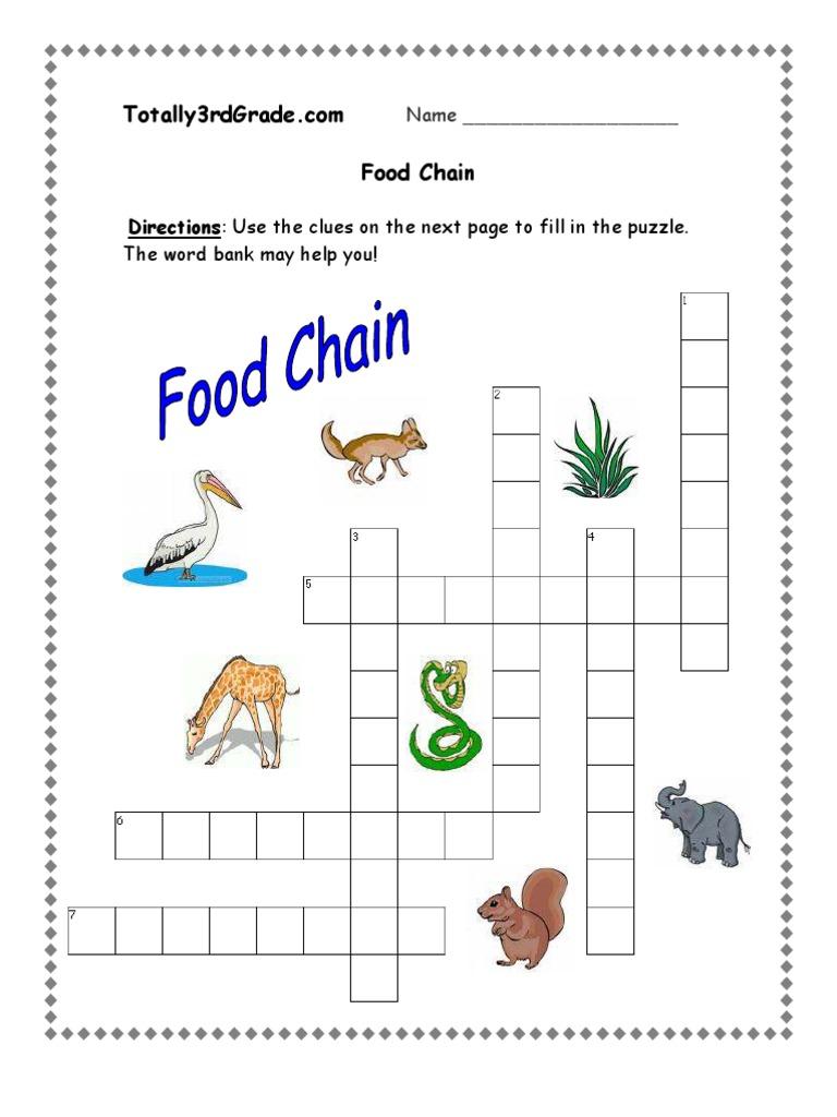 Worksheets Free Food Chain Worksheets 3rd grade food chain worksheet