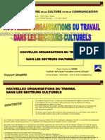 Rapport Simplifie NEFNOT Dans Les Secteurs Culturels INNEF2007