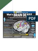 What is brain dead?