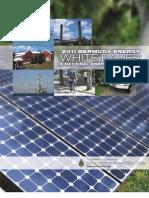 Bermuda Energy White Paper 2011