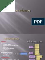 hidrocarburos1