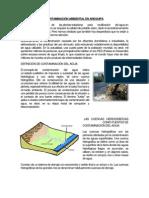 CONTAMINACIÓN AMBIENTAL EN AREQUIPA