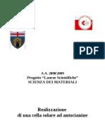 2006 Cella Solare Colorante Organico Unigels
