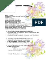 proiect deea crizantema