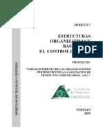 Modulo 7 Estructuras Organizativas