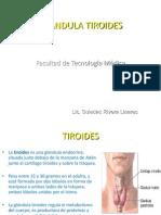 Glandula Tiroides Final