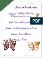 Asignación de Anatomía