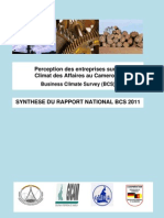 Index Climat Des Affaires Cameroun BCS 2011