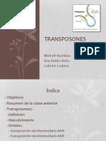 Transpo s Ones