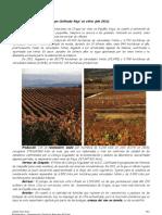 Denominación de Origen Calificada Rioja, en cifras (2011)