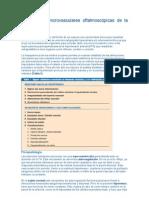 Alteraciones  oftalmoscópicas de la Hipertension Arterial
