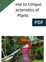 Unique Characteristics of Plants