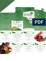 Trptico Jornadas Gastronmicas 2011 (1)