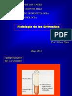 Funciones de Los Eritrocitos U-2012