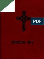 Triodul Mic (2004)