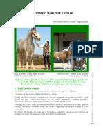 Apontamentos Sobre o Maneio de Cavalos Cascos Maria Isabel David Coelho Martins 2008