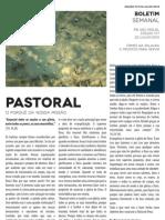 Boletim Semanal 22/07/2012 a 28/07/2012
