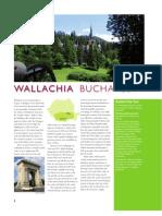 Romania -  Bucharest brochure
