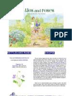'Nettles an roses' book - apresentação em português
