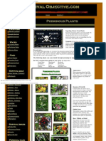 SurvivalObjective.com - Wilderness survival - Poisonous Plants to Avoid