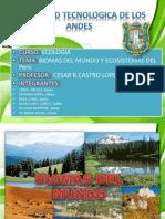 BIOMAS DEL MUNDO Y ECOSISTEMAS DEL PERÚ (2)