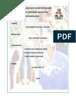 Informe de Coliformes Imprimir