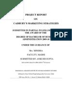 Cadbury Project (Autosaved)