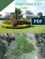 Botanic Gardens of Kew London