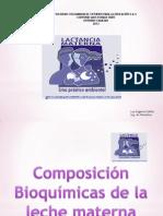 Lactancia Materna Bioquimica y Pasos